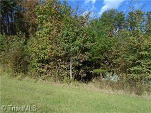 Reidsville, NC 27320 :: Kristi Idol with RE/MAX Preferred Properties