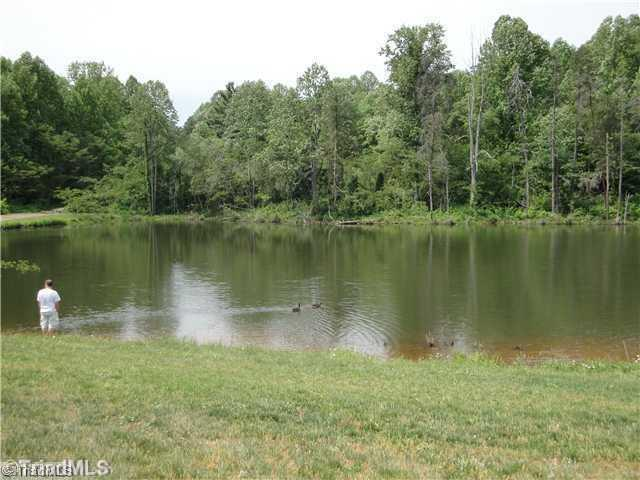 295 Spring Lake Farm Circle, Winston Salem, NC 27101 (MLS #820236) :: HergGroup Carolinas