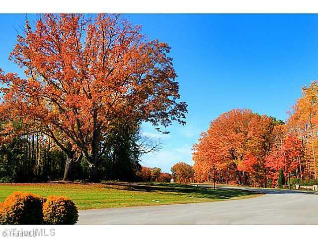 65 Leeward Drive, Stokesdale, NC 27357 (MLS #825127) :: Lewis & Clark, Realtors®