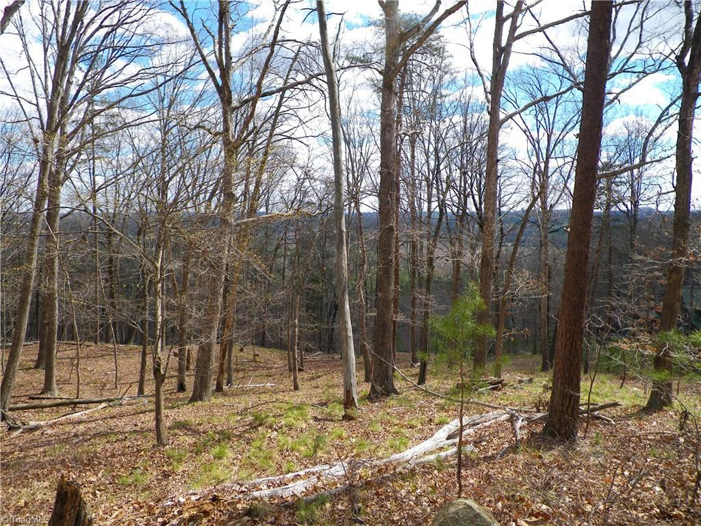 155 Plateau Lane - Photo 1