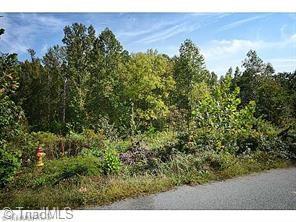 145 Bay Tree Lane, Thomasville, NC 27360 (#871774) :: Mossy Oak Properties Land and Luxury