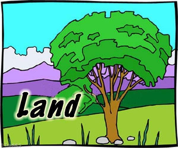 0 Hogan Drive, Stoneville, NC 27048 (MLS #874307) :: Banner Real Estate