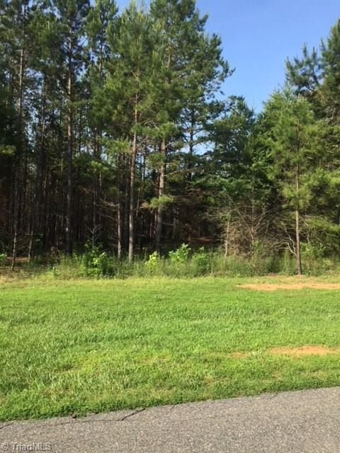 207 Rima Landing, Denton, NC 27239 (MLS #892190) :: NextHome In The Triad
