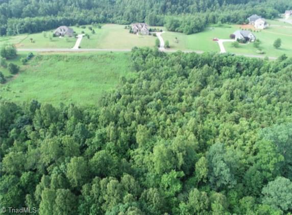 200 Riverchase Road, Pinnacle, NC 27043 (MLS #894068) :: Banner Real Estate
