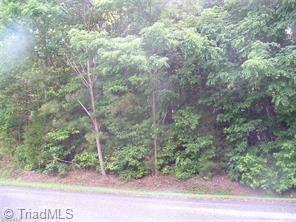 1025 Richland Street, High Point, NC 27260 (MLS #902219) :: Kristi Idol with RE/MAX Preferred Properties