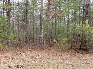 7 Baldwin Drive, Lowgap, NC 27024 (MLS #908375) :: Kristi Idol with RE/MAX Preferred Properties