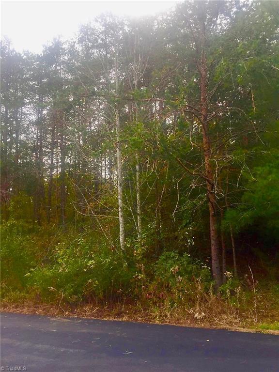 Pool Side Drive, Germanton, NC 27019 (MLS #908878) :: Kristi Idol with RE/MAX Preferred Properties