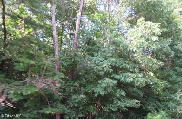8 Northridge Drive, Hays, NC 28635 (MLS #910505) :: RE/MAX Impact Realty