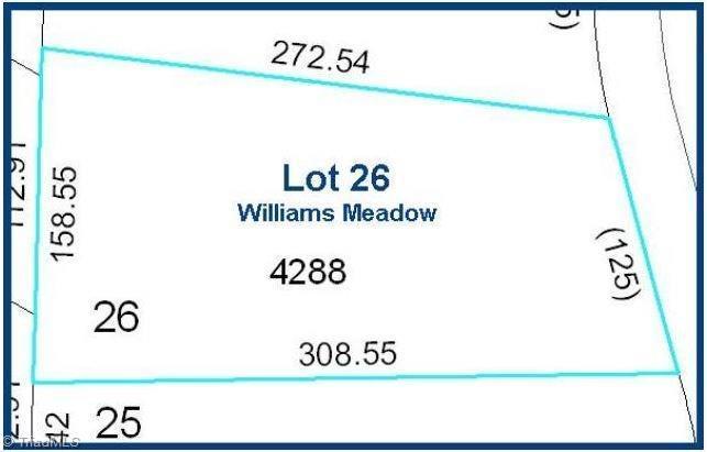 308 Williams Meadow Lane - Photo 1
