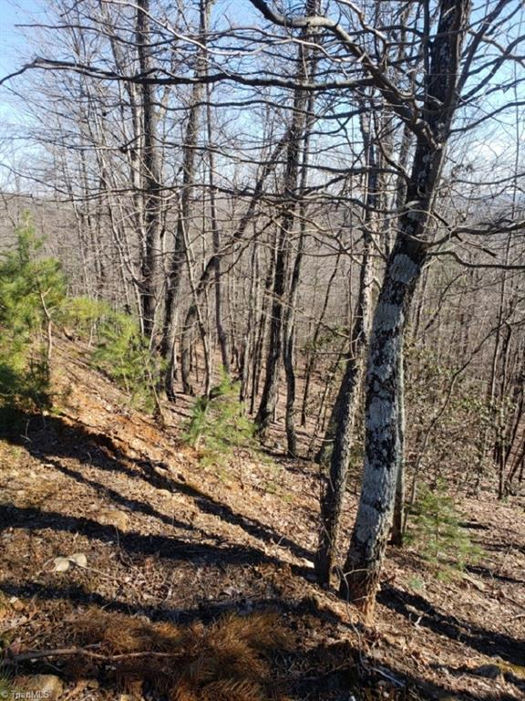 0 Chestnut Mountain Farms Parkway, Mcgrady, NC 28649 (MLS #917904) :: Ward & Ward Properties, LLC