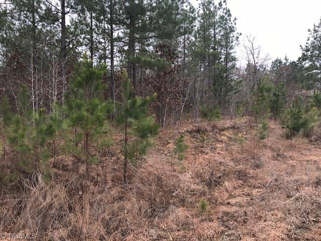 6812 Pritchett Woods Drive, Browns Summit, NC 27214 (MLS #918928) :: HergGroup Carolinas