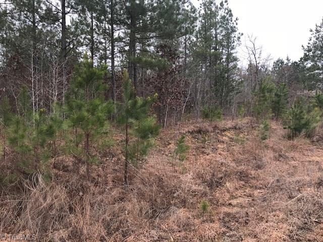 6814 Pritchett Woods Drive, Browns Summit, NC 27214 (MLS #918930) :: HergGroup Carolinas