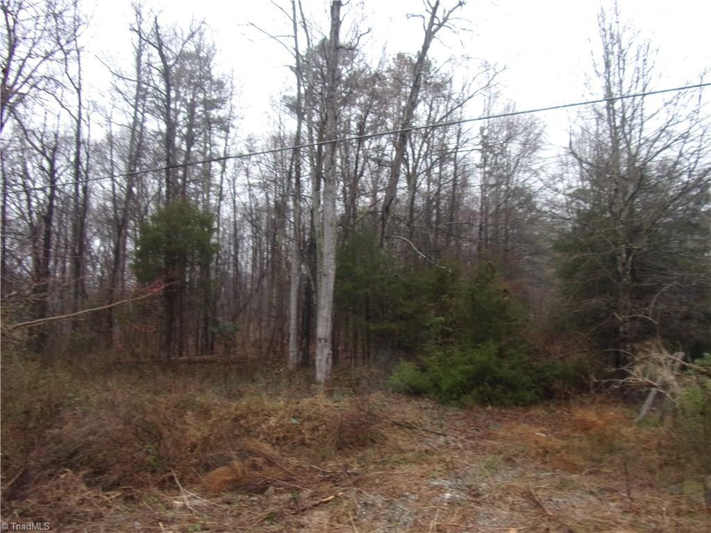 2260 Old Nc Highway 109 - Photo 1