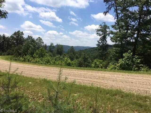 Blazing Ridge Trail, Mcgrady, NC 28649 (MLS #919636) :: Kristi Idol with RE/MAX Preferred Properties