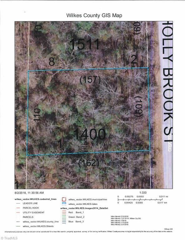 0 Holly Brook Street, North Wilkesboro, NC 28659 (MLS #922197) :: RE/MAX Impact Realty