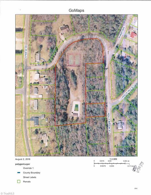 148 Holly Brook Street, North Wilkesboro, NC 28659 (MLS #922364) :: RE/MAX Impact Realty