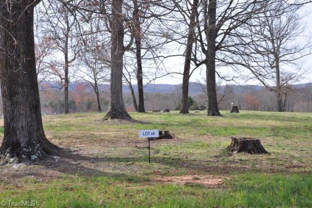 4 Holly Berry Lane, Wilkesboro, NC 28697 (#923194) :: Premier Realty NC