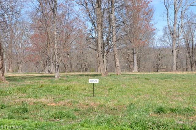 13 Holly Berry Lane, Wilkesboro, NC 28697 (#923204) :: Premier Realty NC