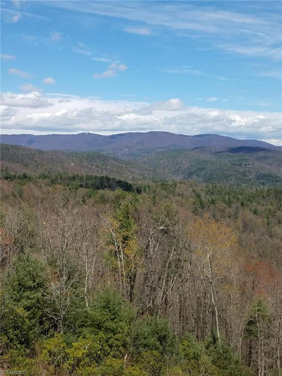 157 Buck Mountain Road, Purlear, NC 28665 (MLS #926412) :: HergGroup Carolinas | Keller Williams