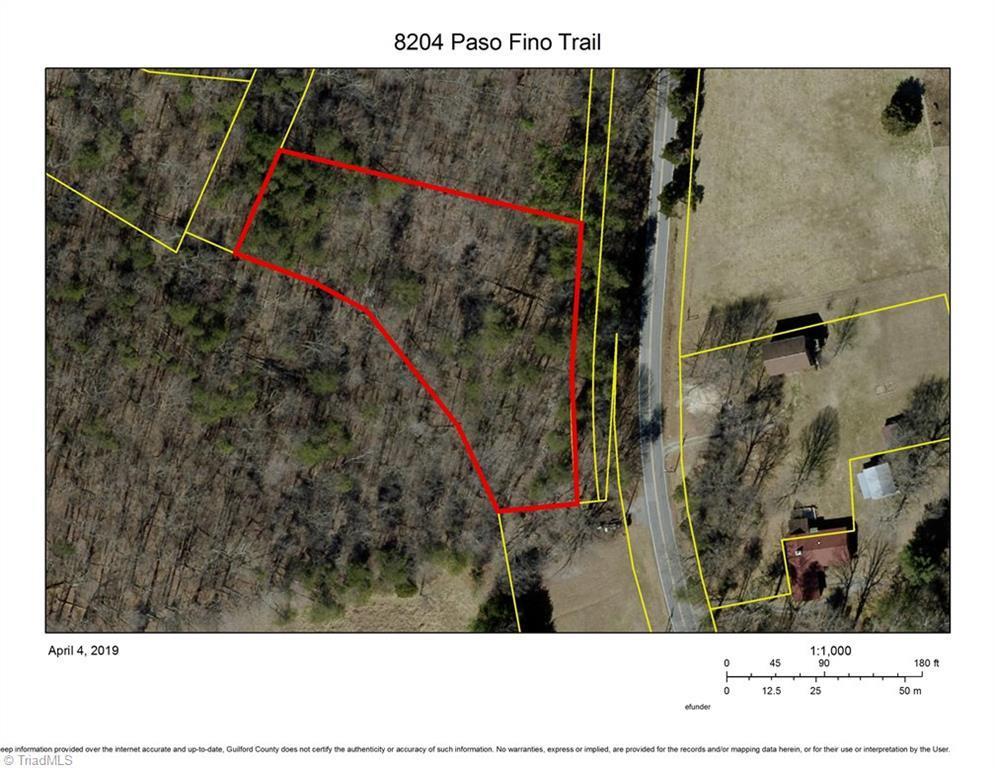 8204 Paso Fino Trail - Photo 1