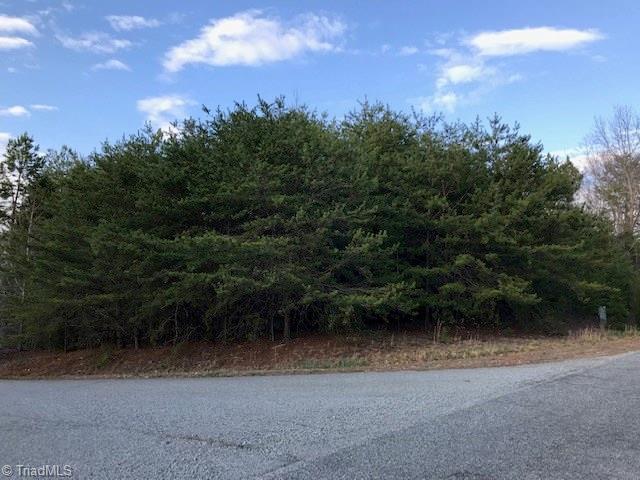 1102 Fern Creek Drive, Lexington, NC 27292 (MLS #930405) :: Ward & Ward Properties, LLC