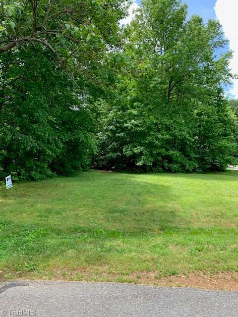 434 Potters Landing, Denton, NC 27239 (MLS #930998) :: Kristi Idol with RE/MAX Preferred Properties