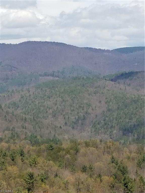 4 Deer Antler Drive, Purlear, NC 28665 (MLS #931353) :: RE/MAX Impact Realty