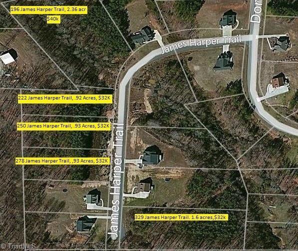 250 James Harper Trail, Lexington, NC 27295 (MLS #935270) :: Ward & Ward Properties, LLC