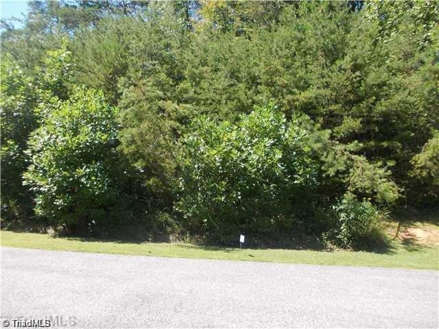 7 Dodson Woods Lane, Pilot Mountain, NC 27041 (MLS #936826) :: Lewis & Clark, Realtors®