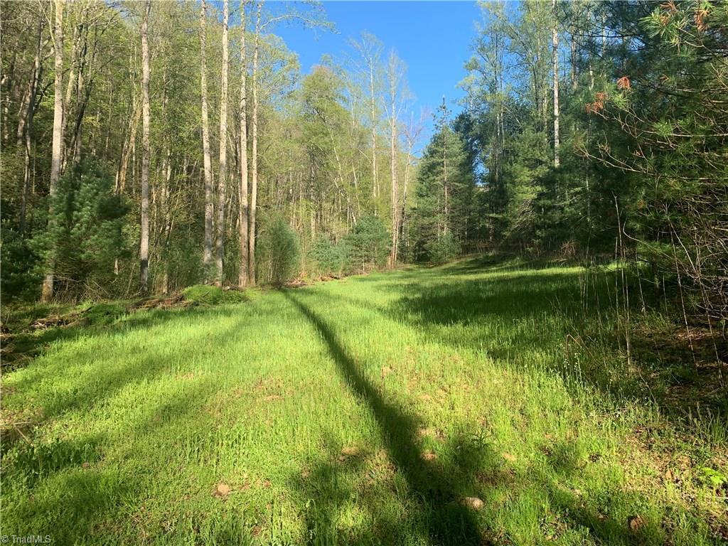 NA Cane Creek Church Road - Photo 1