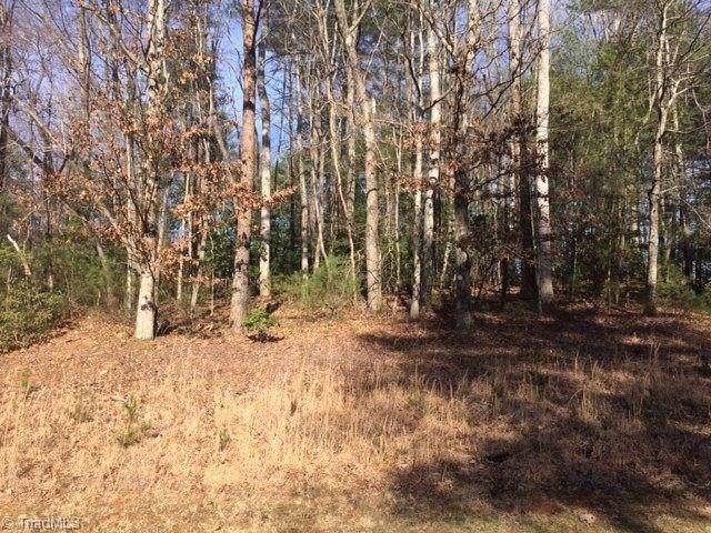 0 Holly Brook Street, North Wilkesboro, NC 28659 (MLS #961307) :: Ward & Ward Properties, LLC