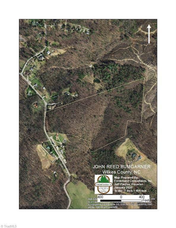 0 Brushy Mountain Road, Moravian Falls, NC 28654 (MLS #963784) :: Ward & Ward Properties, LLC