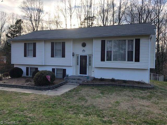 2111 Elizabeth Drive, Mount Airy, NC 27030 (MLS #967365) :: RE/MAX Impact Realty