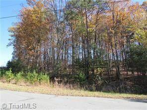 9 Voss Hill Drive, King, NC 27021 (MLS #969072) :: Team Nicholson