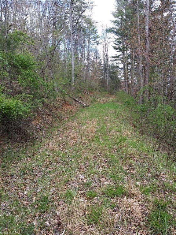18 Trout Lily Trail It, Lot 18, Tro, Lansing, NC 28643 (MLS #975611) :: Team Nicholson
