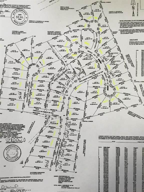 0 Woods Drive Lot 23, Randleman, NC 27317 (#980776) :: Premier Realty NC