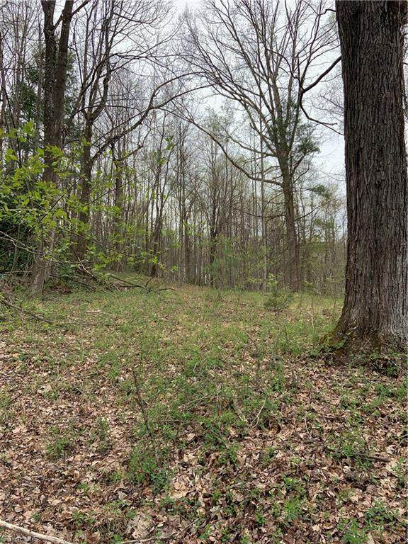 000 Wildcat Road, Moravian Falls, NC 28654 (#983856) :: Mossy Oak Properties Land and Luxury