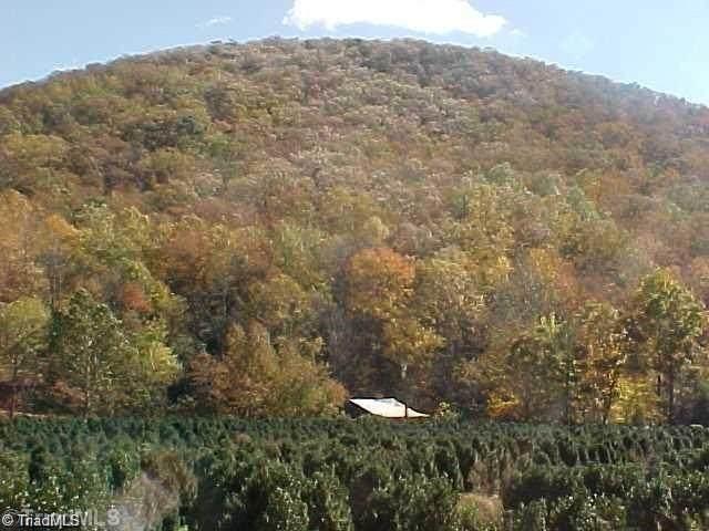 TBD Confederate Trail - Photo 1