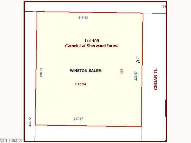 424 Cedar Trail, Winston Salem, NC 27104 (#559799) :: Mossy Oak Properties Land and Luxury