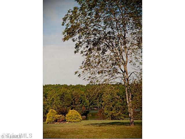 6049 Marion Point Court, Belews Creek, NC 27009 (MLS #686590) :: Banner Real Estate