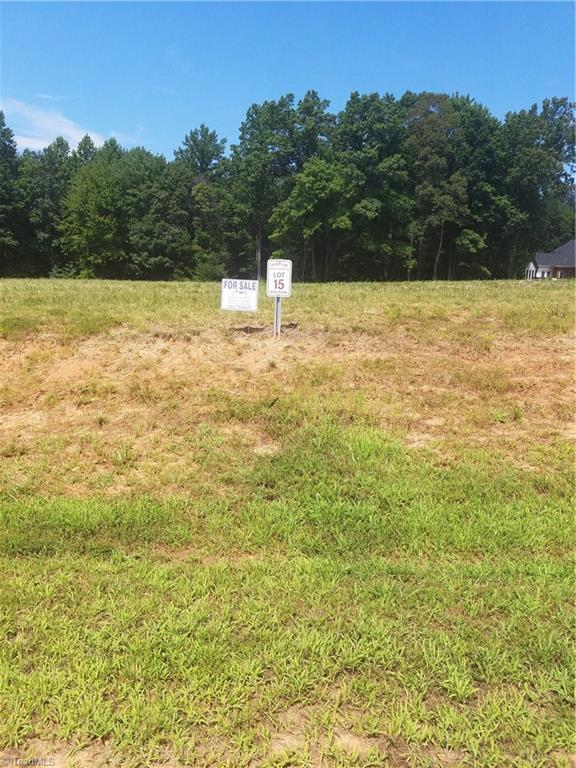 8239 Blackberry Ridge Court, Belews Creek, NC 27009 (MLS #805589) :: RE/MAX Impact Realty