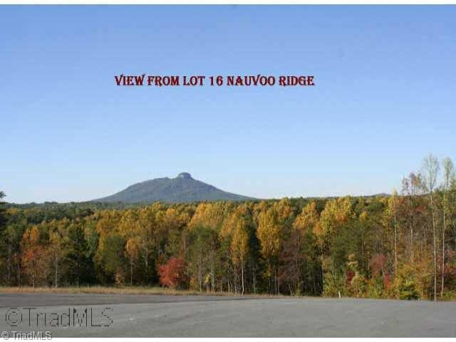 16 Nauvoo Ridge Drive, Tobaccoville, NC 27050 (MLS #831067) :: Banner Real Estate