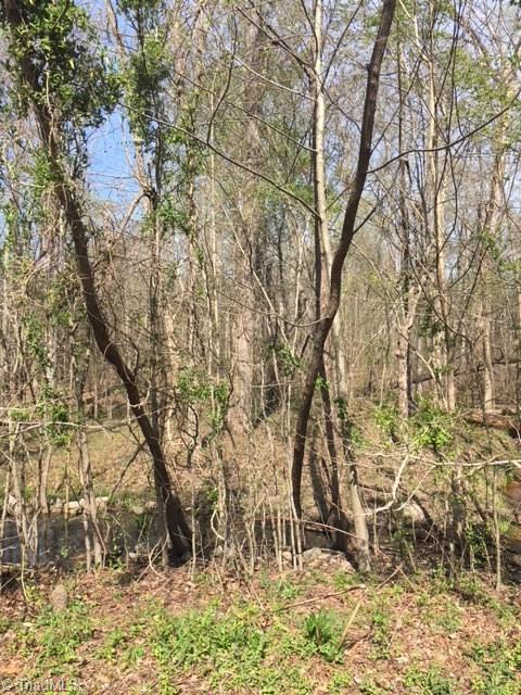 432 Big Tree Road, High Point, NC 27265 (MLS #882791) :: Lewis & Clark, Realtors®