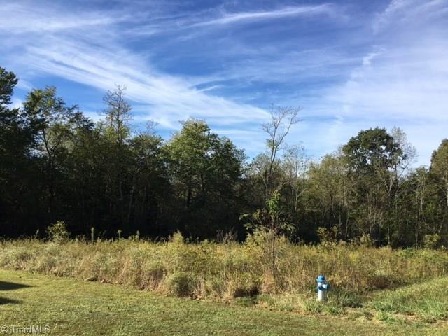 1036 Shenandoah Trail, Boonville, NC 27011 (MLS #915752) :: HergGroup Carolinas