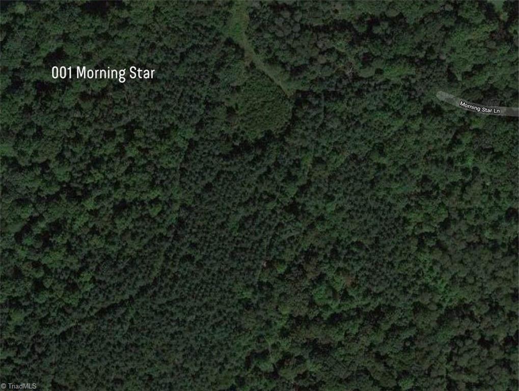 001 Morning Star Lane - Photo 1