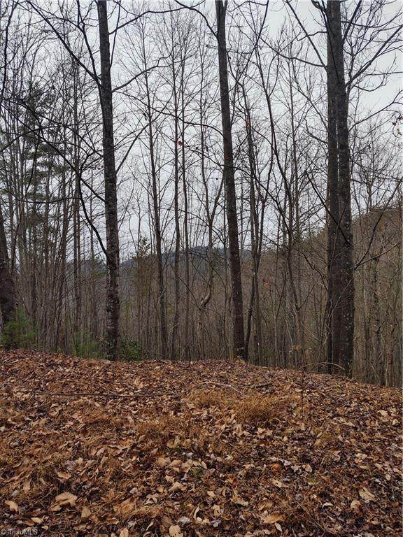 Lot 102 Staghorn Road, Purlear, NC 28665 (MLS #998075) :: Berkshire Hathaway HomeServices Carolinas Realty