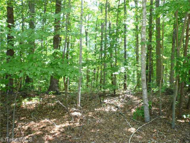 56 Woodsway Court, Reidsville, NC 27320 (MLS #701745) :: HergGroup Carolinas