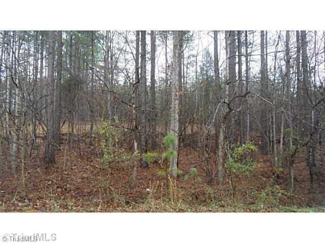L 19 Old Camp Road, Denton, NC 27239 (MLS #707245) :: Berkshire Hathaway HomeServices Carolinas Realty