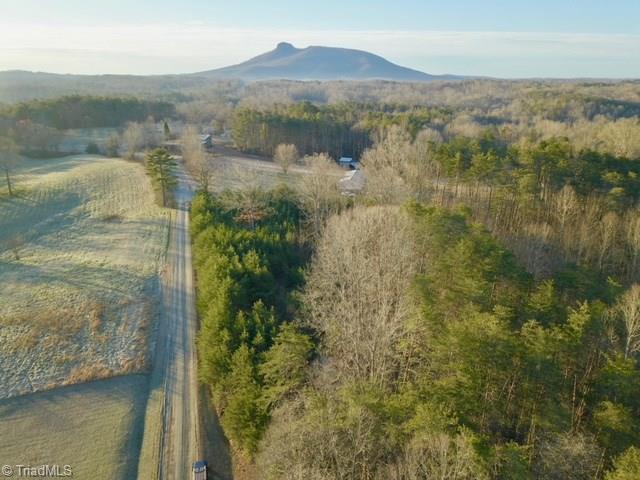 103 Foothill Farm Lane, Pilot Mountain, NC 27041 (MLS #908514) :: RE/MAX Impact Realty