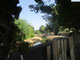 4005 Ione Street - Photo 28